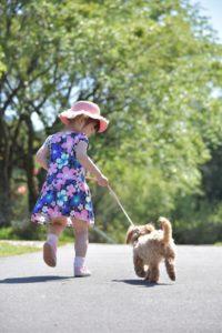 ワンブル や しつけくん は、犬がかわいそうと言った知人がいたが、本当にそうなのだろうか?